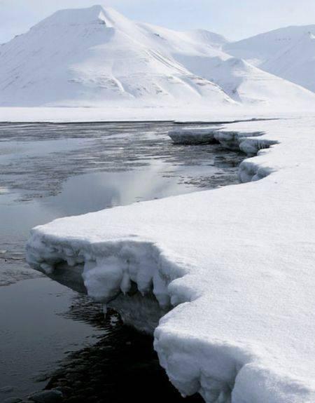 Arktyka 11