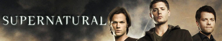 Supernatural S09E08 720p HDTV X264-DIMENSION