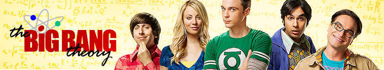 The Big Bang Theory S07E11 480p HDTV x264-mSD