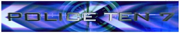Police Ten 7 S21E29 480p HDTV x264-mSD