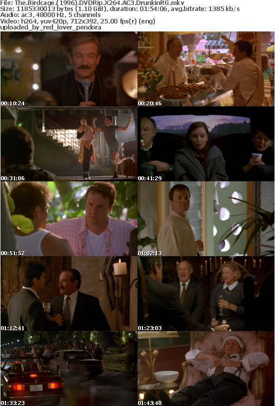 The Birdcage (1996) DVDRip X264 AC3 DrunkinRG