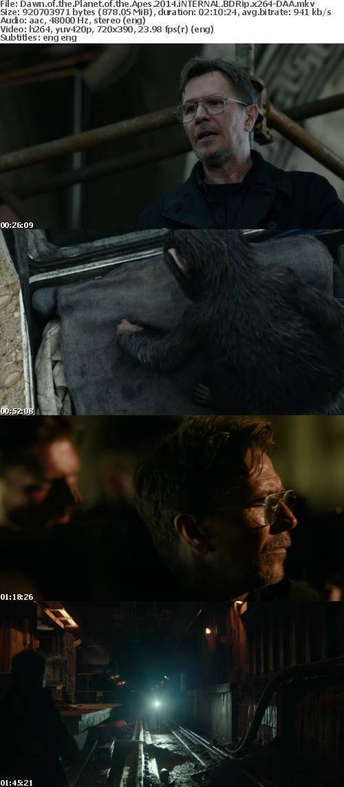 Dawn of the Planet of the Apes 2014 iNTERNAL BDRip x264-DAA