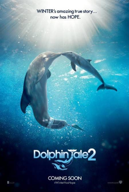 Download Dolphin Tale 2 2014 480p BRRip XVID AC3 ACAB