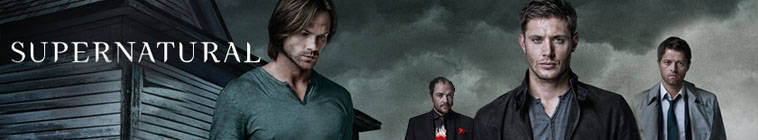 Supernatural S10E07 HDTV XviD-EVO