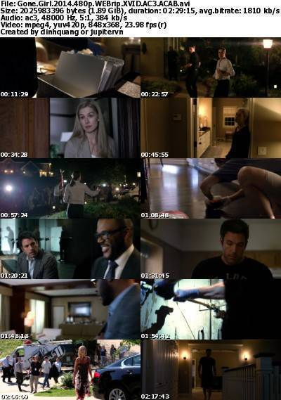 Gone Girl (2014) 480p WEBRip XviD AC3-ACAB