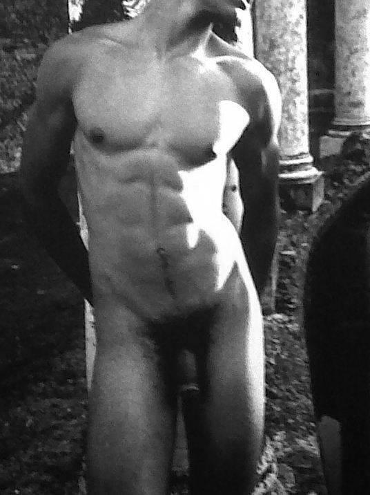 Amateur gay penis gallery noah carlisle 10