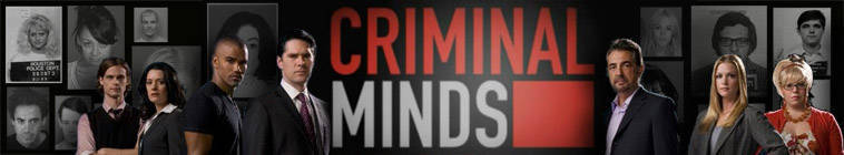 Criminal Minds S10E22 480p HDTV x264-mSD