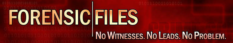 Forensic Files S10E19 Gold Rush DSR x264-W4F