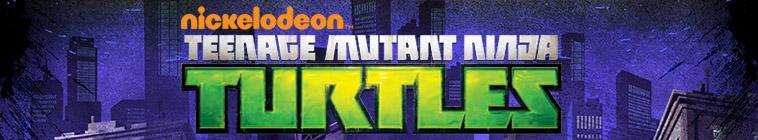 Teenage Mutant Ninja Turtles 2012 S04E10 Trans-Dimensional Turtles HDTV x264-W4F