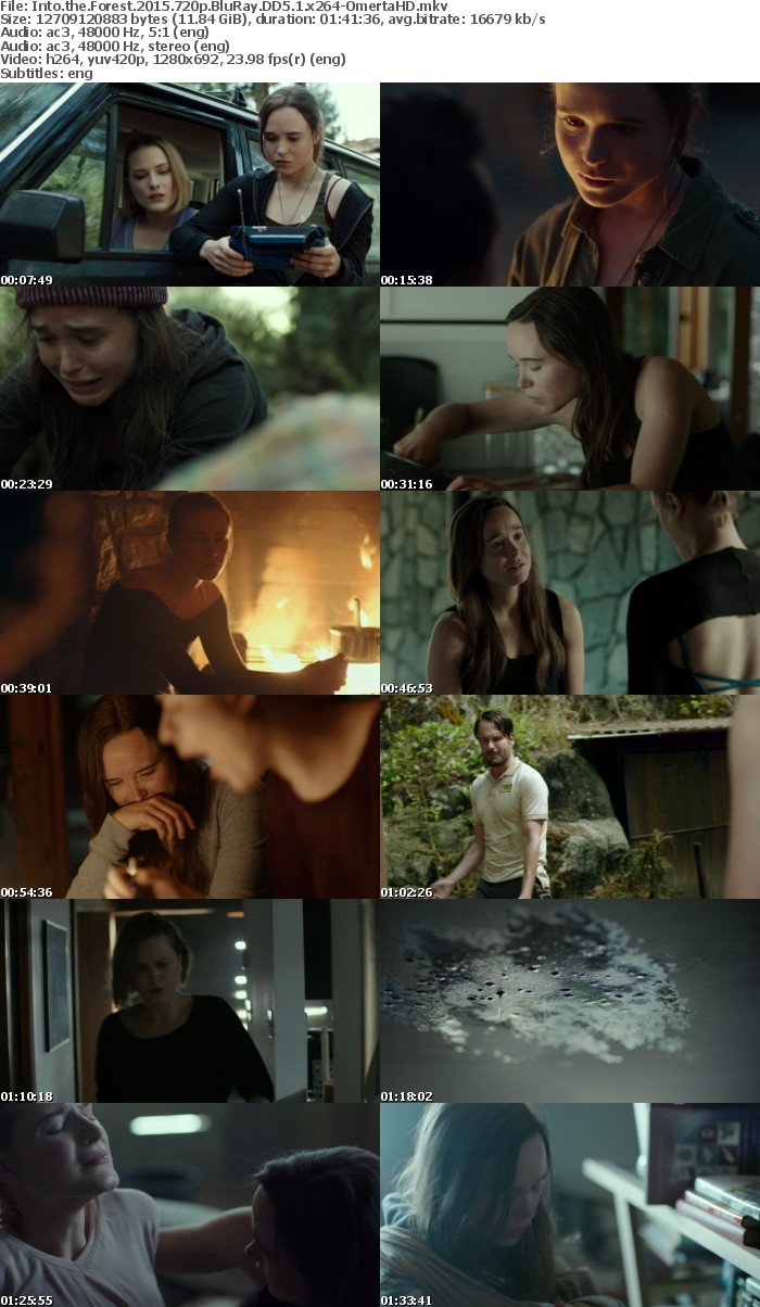 Into the Forest 2015 720p BluRay DD5 1 x264-OmertaHD