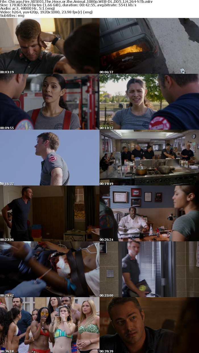 Chicago Fire S05E01 The Hose or the Animal 1080p WEB DL DD5 1 H 264 NTb