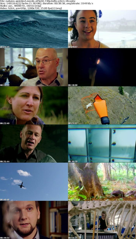 Natures Weirdest Events S05E02 720p HDTV x264-C4TV