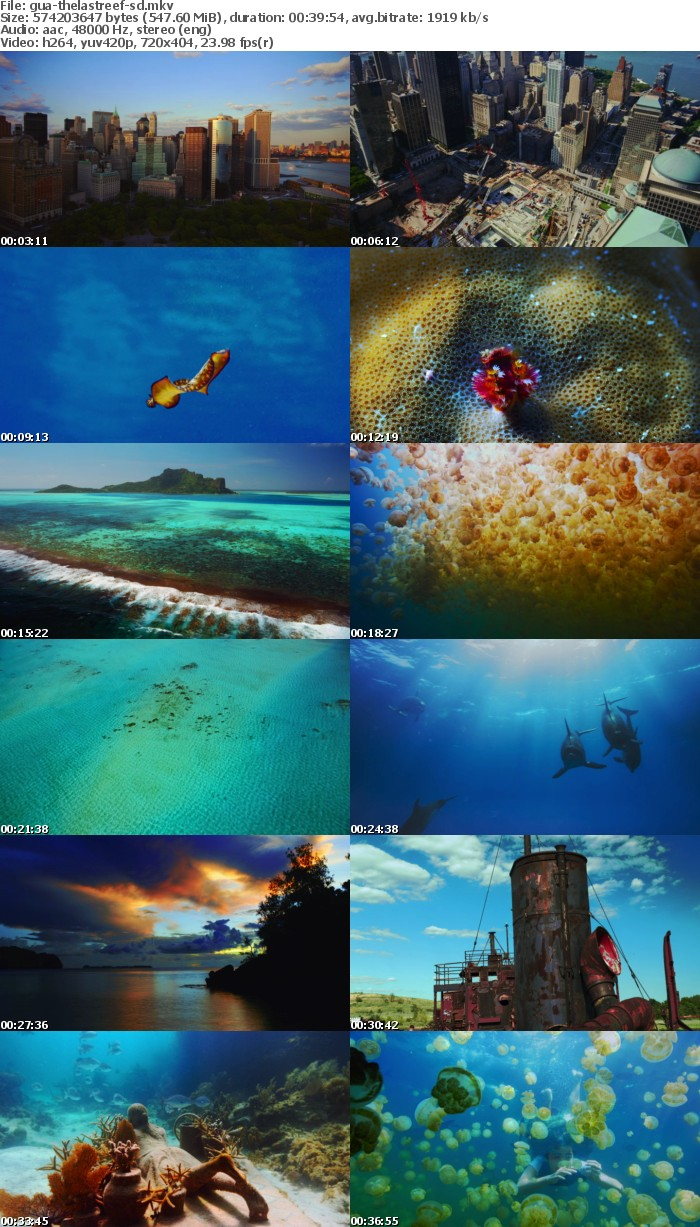 The Last Reef 2012 BDRiP x264-GUACAMOLE