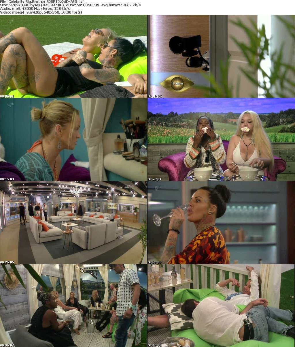 Celebrity Big Brother S20E12 XviD-AFG