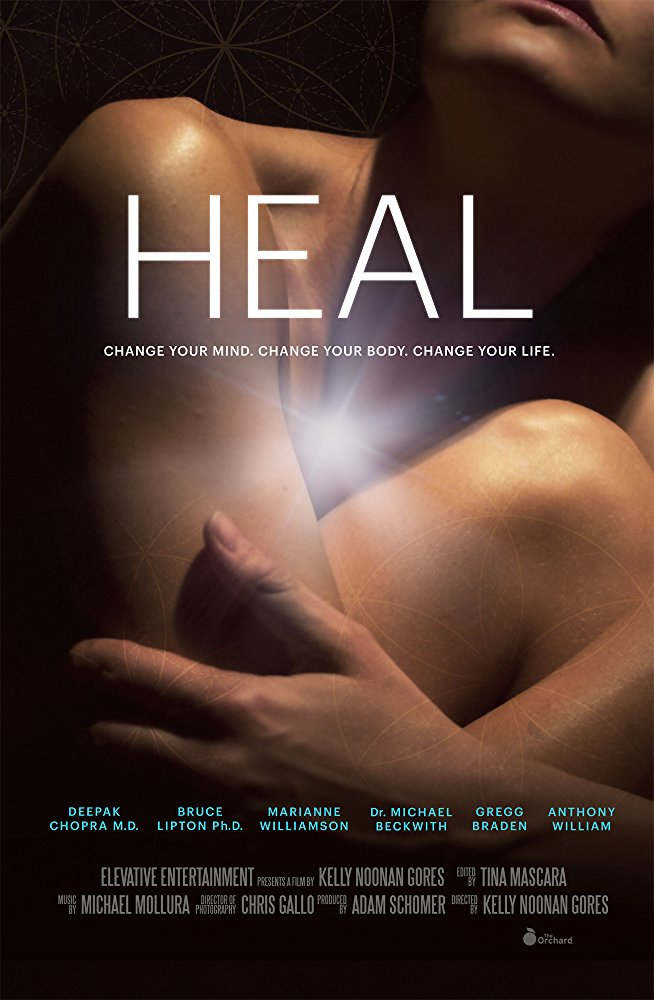 Heal 2017 DOCU WEB-DL XviD MP3-FGT