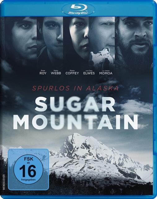 Sugar Mountain (2016) 480p BluRay x264-mSD