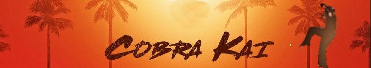 cobra kai s01e09 1080p web h264-convoy