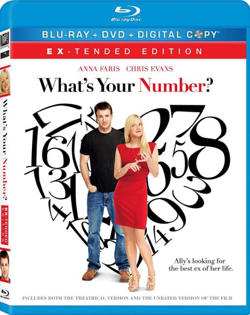 Whats Your Number (2011) 720p BluRay x264-x0r