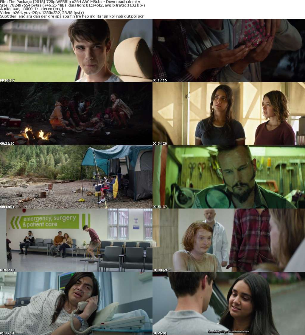 The Package (2018) 720p WEBRip x264 AAC MSubs - Downloadhub