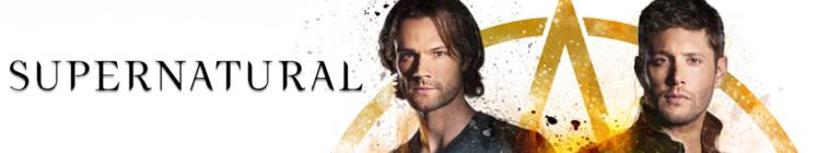 Supernatural S14E04 HDTV x264-SVA