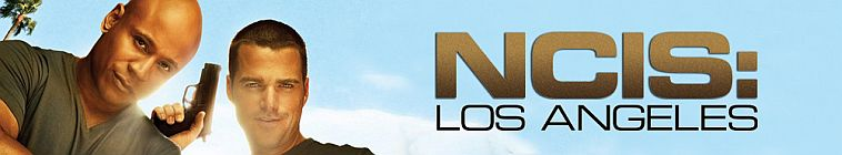 NCIS Los Angeles S09E15 720p HDTV X264-DIMENSION