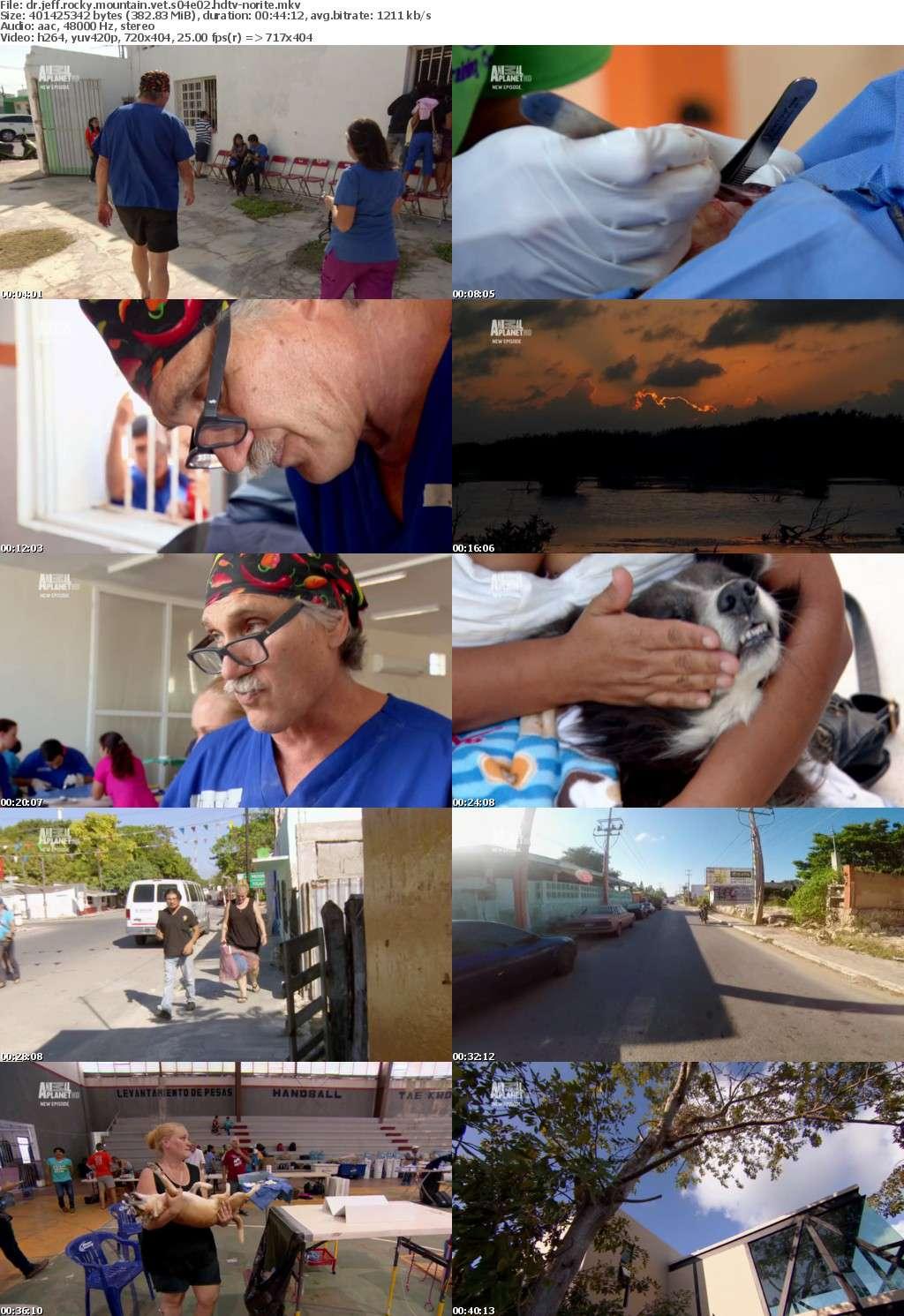Dr Jeff Rocky Mountain Vet S04E02 HDTV x264-NORiTE