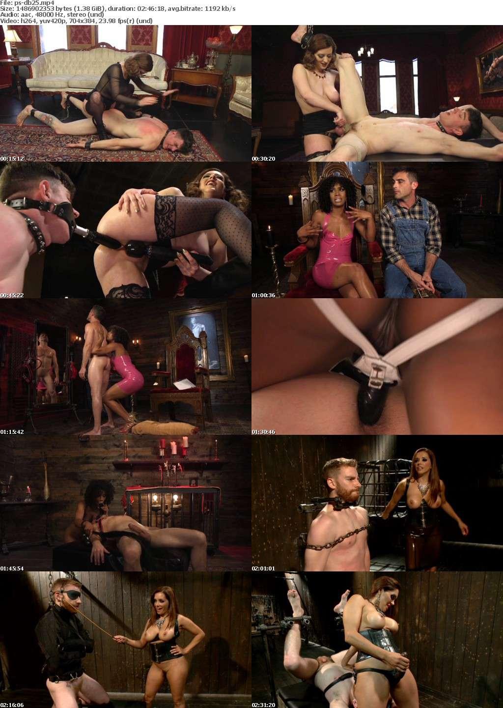Divine Bitches 25 XXX DVDRip x264-Pr0nStarS