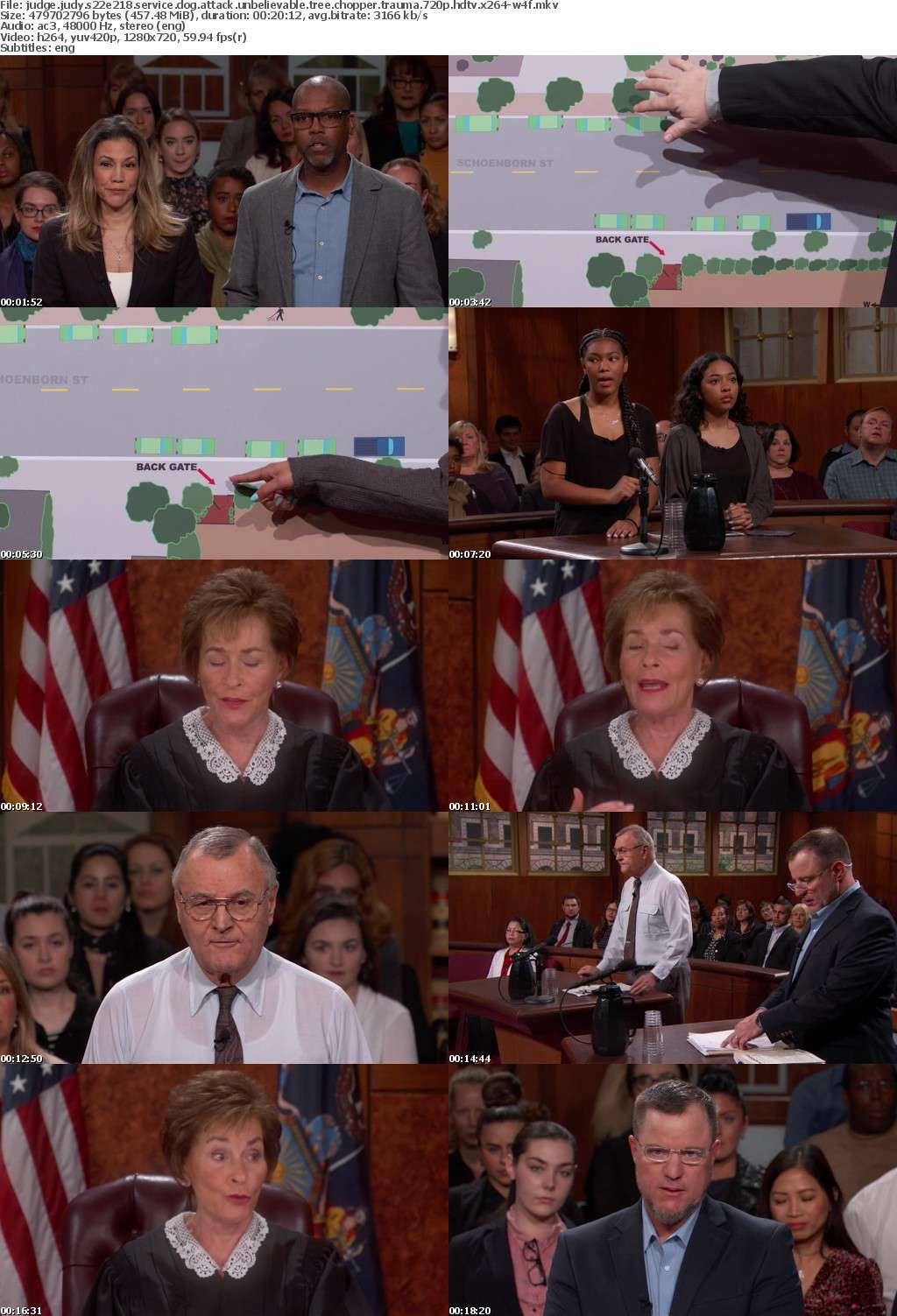 Judge Judy S22E218 Service Dog Attack Unbelievable Tree Chopper Trauma 720p HDTV x264-W4F