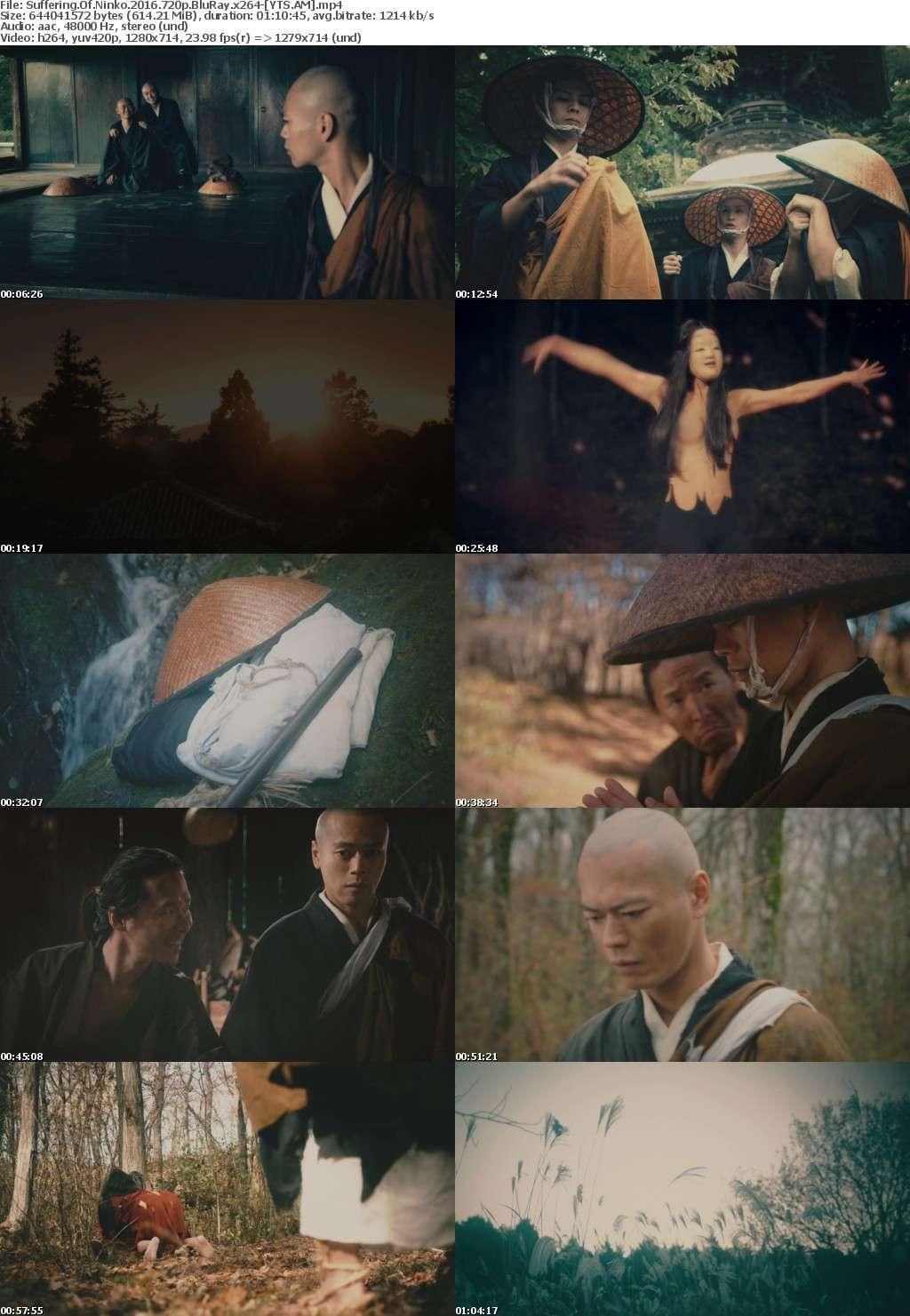 Suffering of Ninko (2016) [BluRay] [720p] YIFY