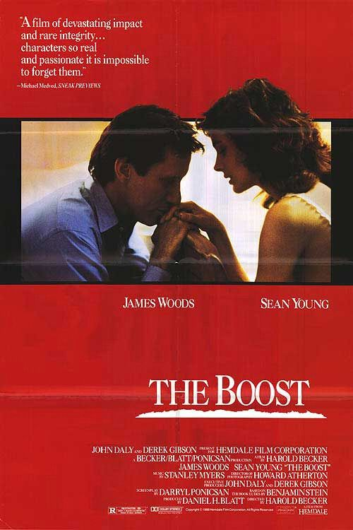 The Boost 1988 DVDRip XViD