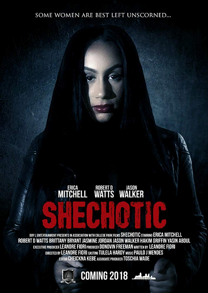 SheChotic 2018 HDRip XviD AC3-EVO[TGx]