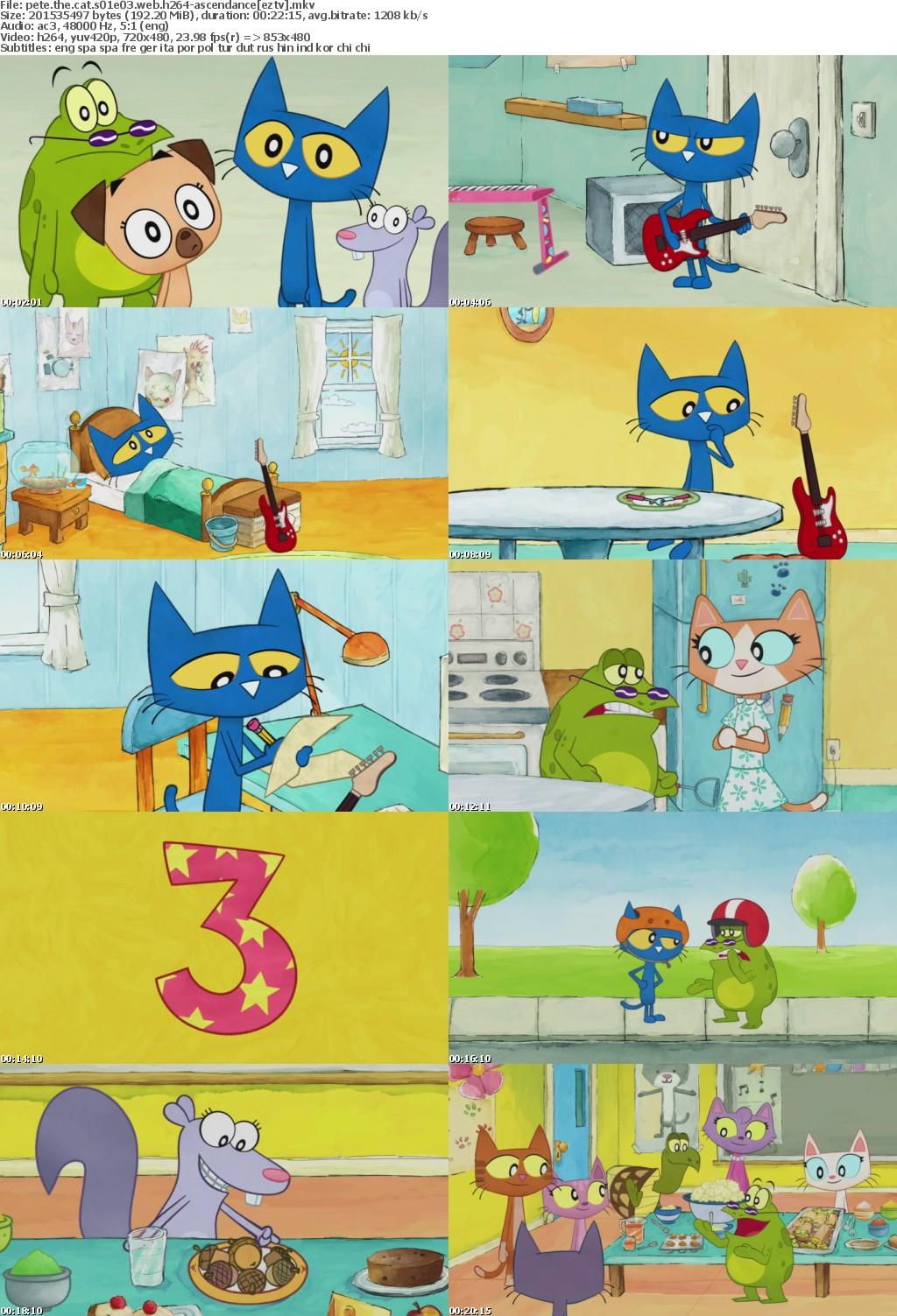 Pete The Cat S01E03 WEB h264-ASCENDANCE
