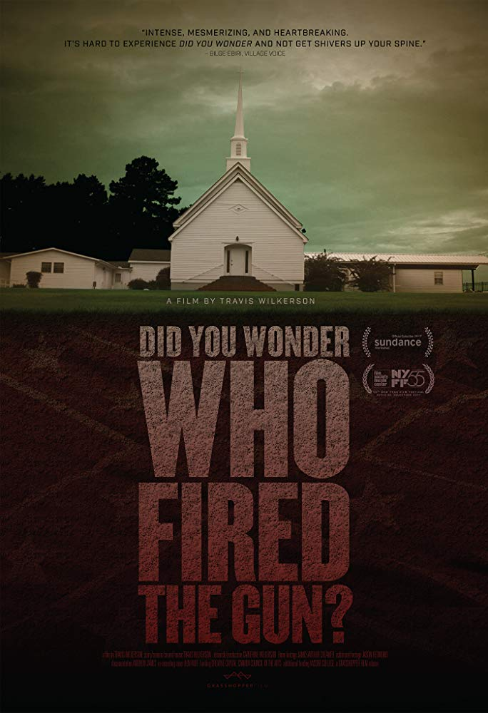 Did You Wonder Who Fired The Gun 2017 LiMiTED DVDRip x264-LPD