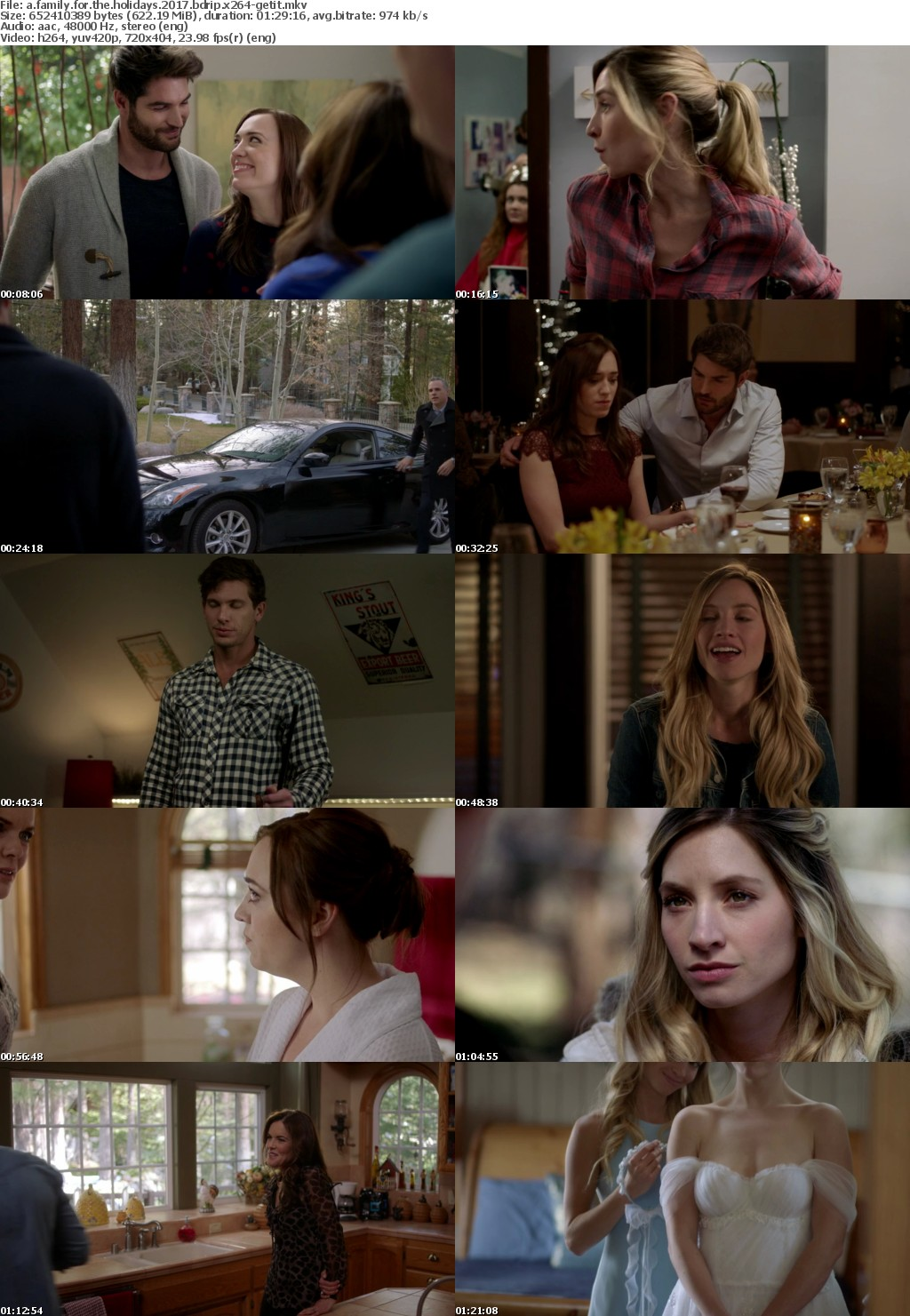 A Family for the Holidays (2017) BDRip x264-GETiT