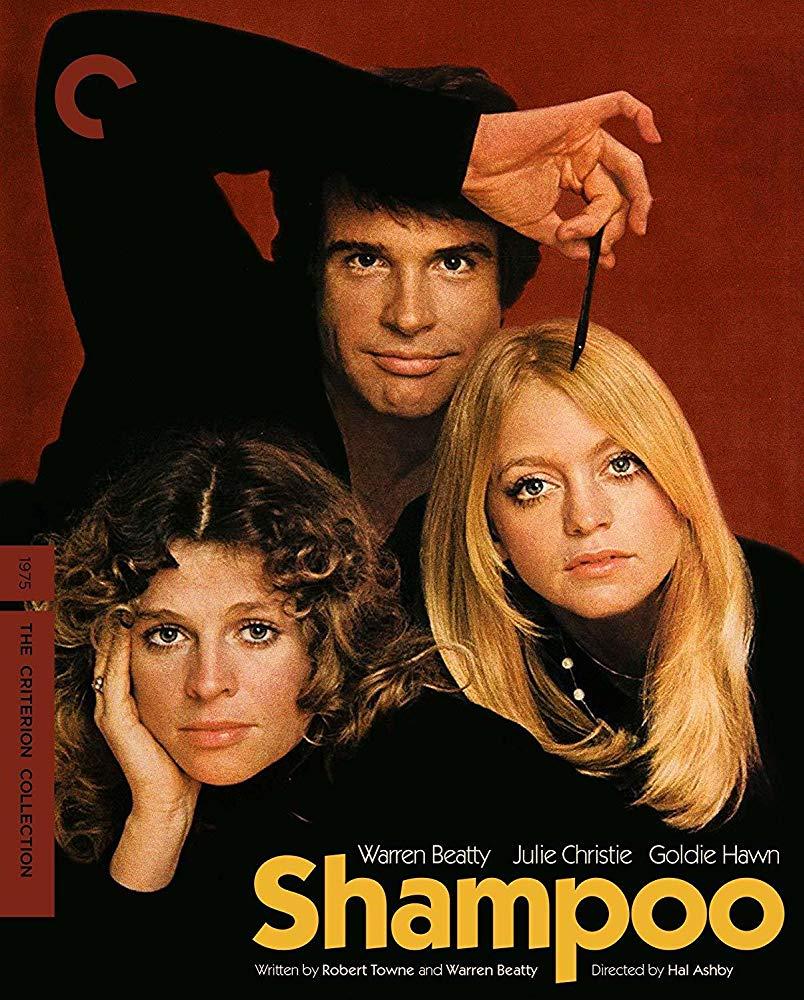 Shampoo 1975 1080p BluRay X264-AMIABLE