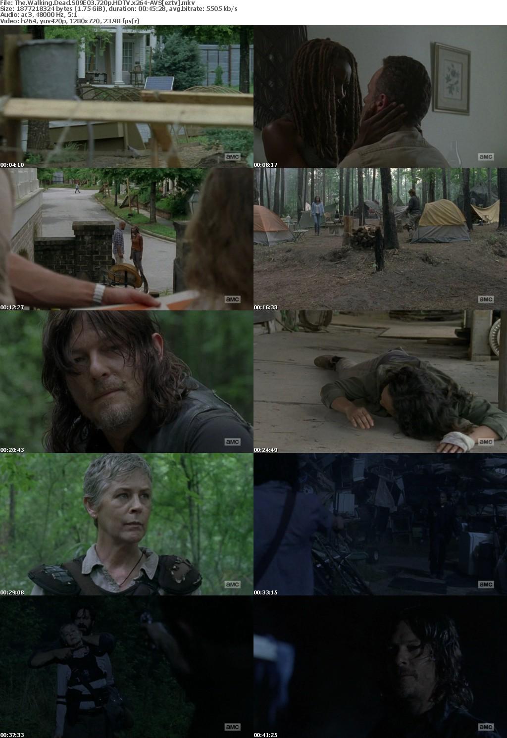 The Walking Dead S09E03 720p HDTV x264-AVS