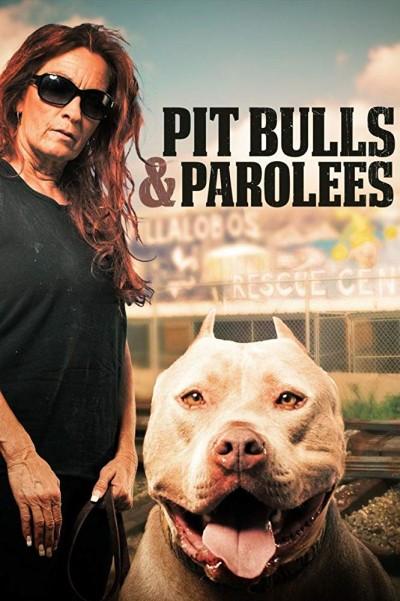 Pit Bulls and Parolees S12E11 My Underdog Life 720p WEB x264-CAFFEiNE