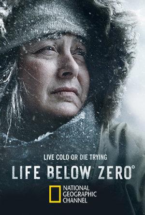 Life Below Zero S11E19 480p x264-mSD