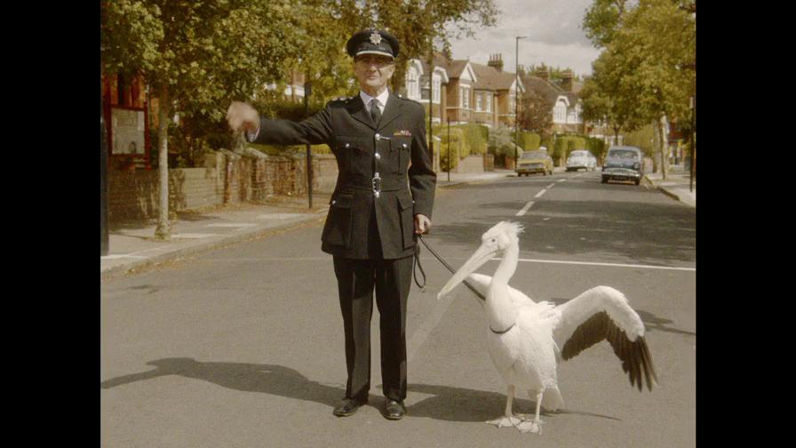 Endeavour S06E01 ITV WEB-DL AAC2 0 x264