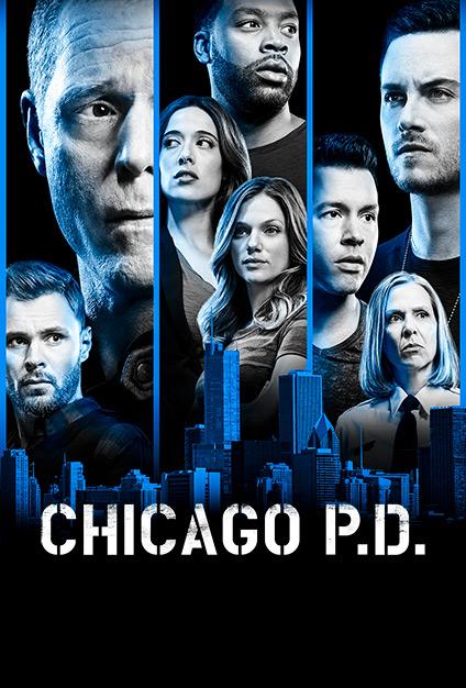 Chicago PD S06E14 iNTERNAL 480p x264-mSD