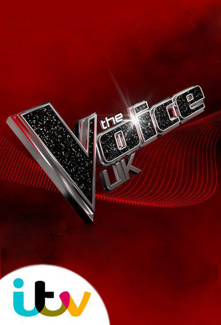 The Voice UK S08E08 480p x264  mSD
