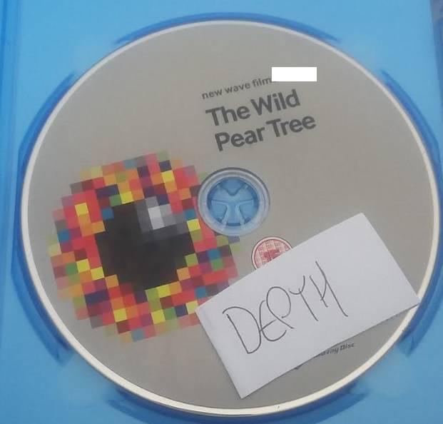 The Wild Pear Tree 2018 720p BluRay x264-DEPTH