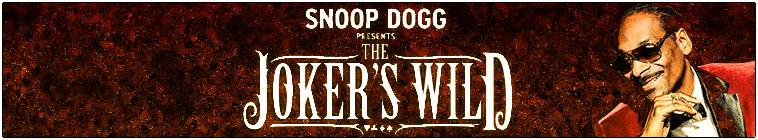 Snoop Dogg Presents The Jokers Wild S02E19 480p x264-mSD