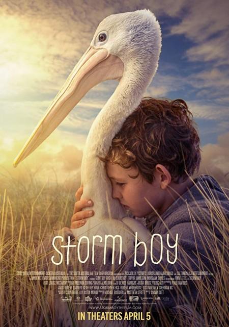 Storm Boy (2019) 720p BluRay 800MB x264-GalaxyRG