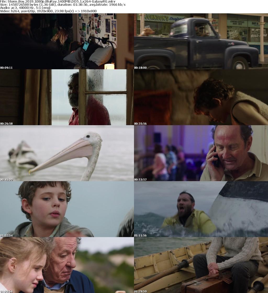 Storm Boy (2019) 1080p BluRay 1400MB DD5.1 x264-GalaxyRG