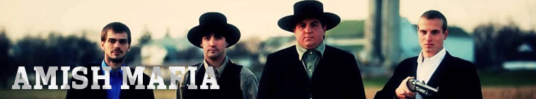 Amish Mafia S04E02 A Church Divided INTERNAL 480p x264-mSD