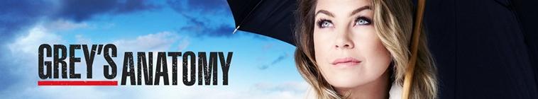 Greys Anatomy S15E24 HDTV x264-KILLERS
