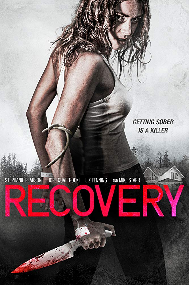 Recovery 2019 1080p WEB-DL H264 AC3-EVO