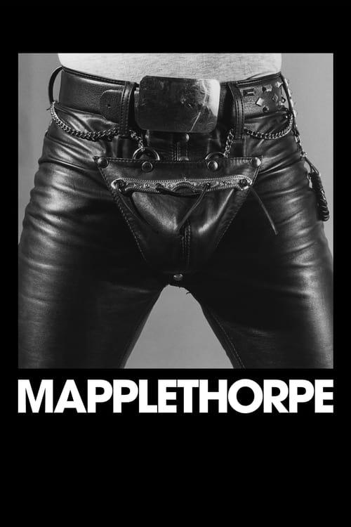 Mapplethorpe 2018 1080p WEB-DL H264 AC3-EVO