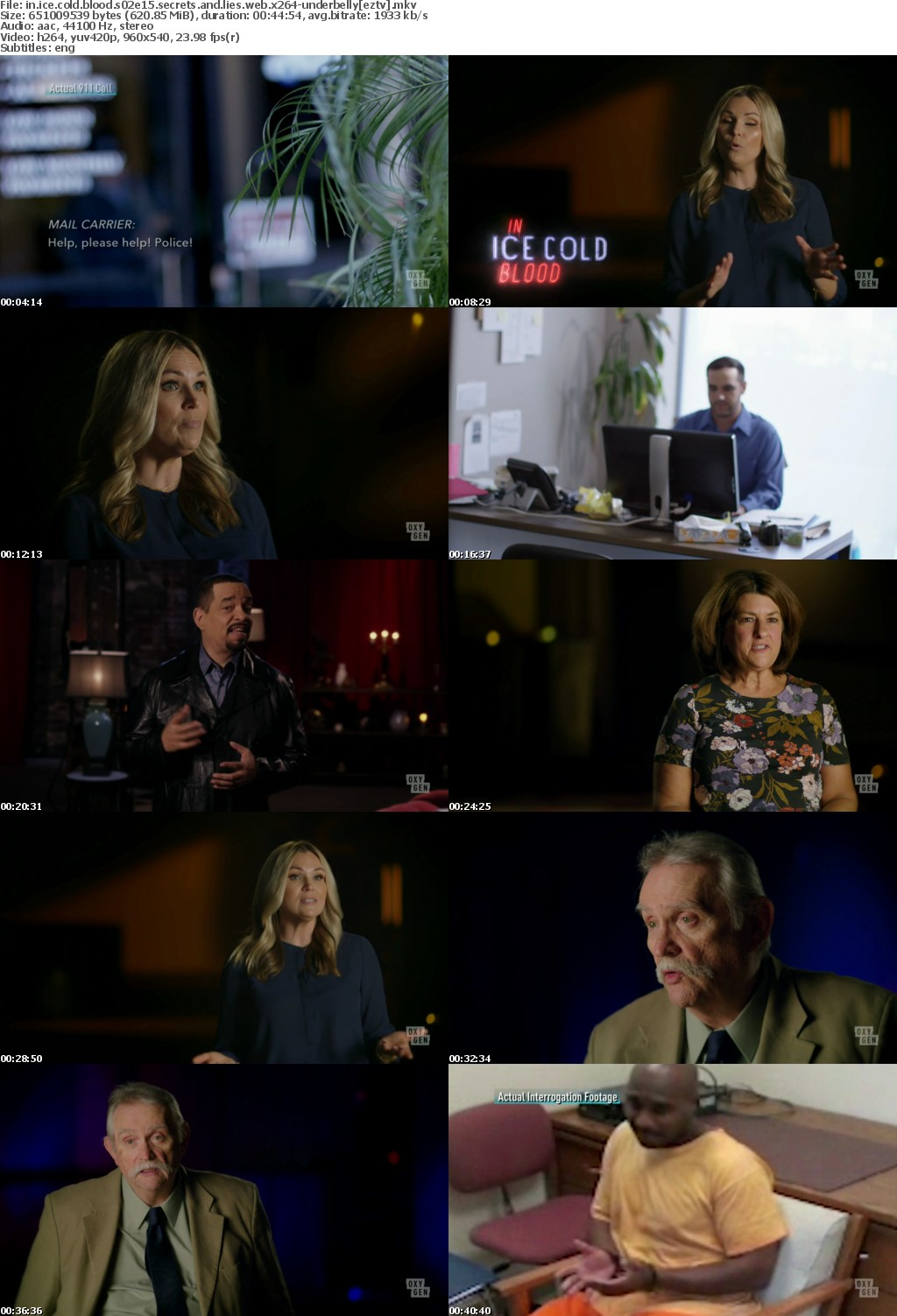 In Ice Cold Blood S02E15 Secrets and Lies WEB x264-UNDERBELLY